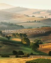 Italian Countryside wallpaper mural thumbnail