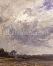 Landscape with Grey Windy Sky, c.1821-30 (oil on paper laid down on millboard) wall mural thumbnail