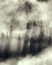 Foggy Landscape Stephens Passage Tongass National Forest wallpaper mural thumbnail