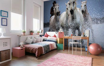 Horse Wallpaper & Wall Murals   Wallsauce USA