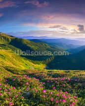 Lush Green Mountains wall mural thumbnail