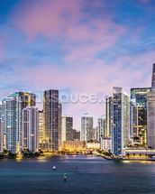 Miami Skyline, Florida wall mural thumbnail