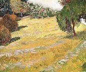 Field in Sunlight, 1888 (oil on canvas) wall mural thumbnail