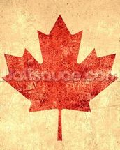 Canadian Flag wallpaper mural thumbnail
