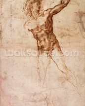 Sketch of a Nude Man (W. 4 recto) (pen & ink on paper) wall mural thumbnail