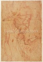 Figure Study (red chalk on paper) mural wallpaper thumbnail