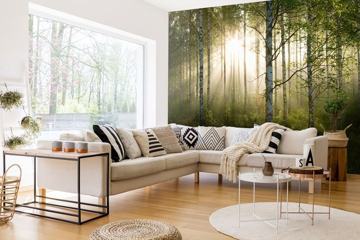 sun drenched birch forest in trendy lounge with l-shaped sofa'