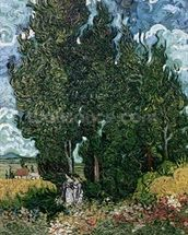 The cypresses, c.1889-90 (oil on canvas) mural wallpaper thumbnail