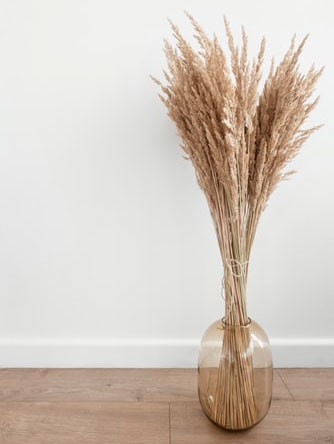 beige pampas grass in a clear vase stood on the floor