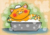 Cat in the Bath mural wallpaper thumbnail