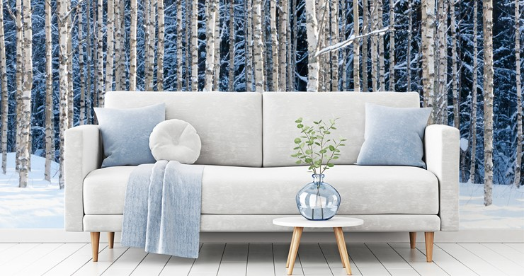birch forest covered in snow wallpaper with blue and white sofa