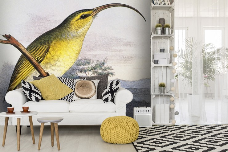Yellow_bird_wallpaper_in_lounge