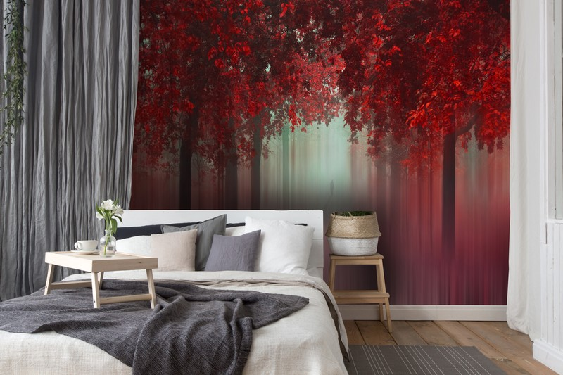 Red decor colour theory for your home