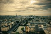 Paris Skyline from Notre Dame mural wallpaper thumbnail