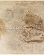 Study for the robes of the Erythraean Sibyl (charcoal with white highlights & brown wash on paper) wallpaper mural thumbnail