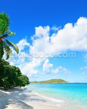 Virgin Islands Beach wall mural thumbnail