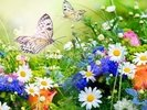 Butterflies and Flowers wall mural thumbnail