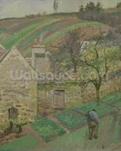 Hillside of the Hermitage, Pontoise, 1873 (oil on canvas) mural wallpaper thumbnail