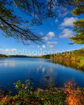 Forest Lake in Autumn mural wallpaper thumbnail