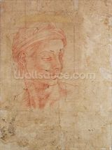 Study of a Head (red chalk on paper) wall mural thumbnail