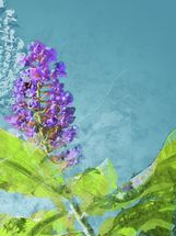 Midsummer - Purple Flowers wallpaper mural thumbnail