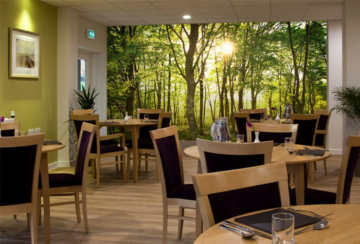 forest-mural-in-care-home