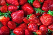Strawberries Fresh wallpaper mural thumbnail