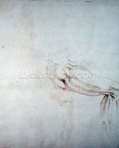Study of a Leg with Notes (brown ink on paper) (recto) wallpaper mural thumbnail