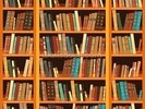 Bookcase - Light wall mural thumbnail
