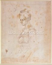 W.41 Sketch of a woman wall mural thumbnail