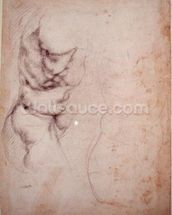 Study of torso and buttock (charcoal on paper) (recto) wall mural thumbnail