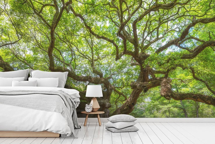 green branches of huge oak tree wallpaper in calm, white and grey bedroom