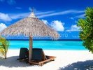 Tropical Beach Chairs wall mural thumbnail