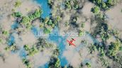 Aerial of red airplane flying over forest wall mural thumbnail