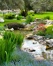 Asian Garden and Pond mural wallpaper thumbnail