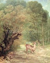 The Hunted Roe-Deer on the alert, Spring, 1867 wallpaper mural thumbnail