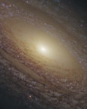 Spiral Galaxy NGC 2841 wallpaper mural thumbnail