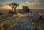 Emsworthy Dartmoor mural wallpaper thumbnail