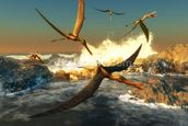 Anhanguera Fishing mural wallpaper thumbnail