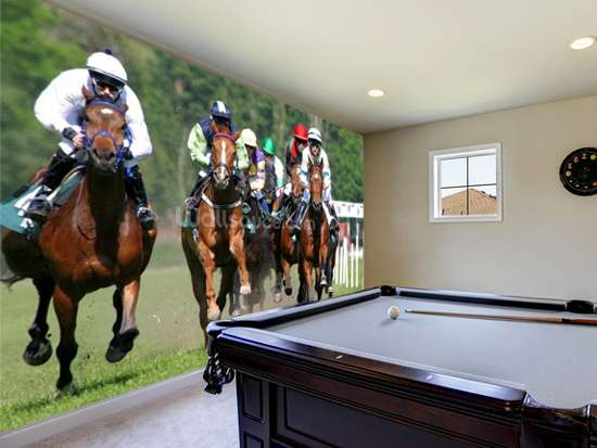 horse racing wallpaper murals