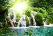 Forest Waterfall mural wallpaper thumbnail