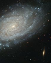 Spiral Galaxy NGC 3370, Home to Supernova Seen in 1994 mural wallpaper thumbnail
