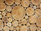 Stacked Round Logs wall mural thumbnail