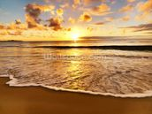 Beach Sunset wallpaper mural thumbnail