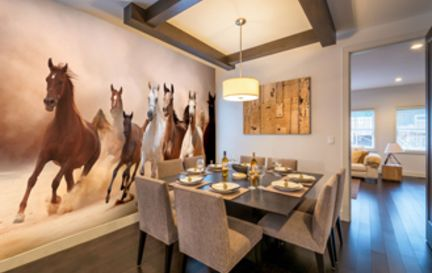 Horse Wall Murals Wallpaper