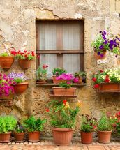 Stone Facade and Flowers, Italy wall mural thumbnail