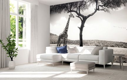 Giraffe Wallpaper Wall Murals Wallpaper