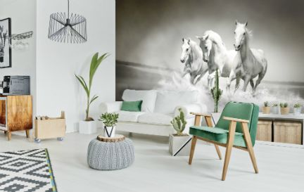 Animal Wallpaper Wall Murals Wallpaper