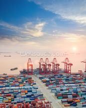 Port of Shanghai Containers wall mural thumbnail