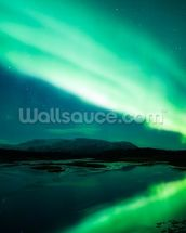 The Northern Lights mural wallpaper thumbnail